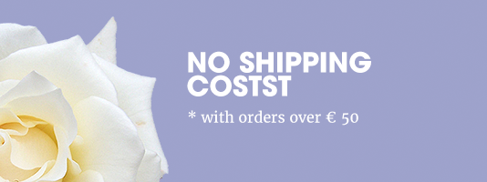 now free shipping